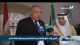 وزير الخارجية المصري يشيد بالرؤية الثاقبة لخادم الحرمين الشريفين