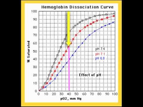 AS PE A+P Dissociation Curve - YouTube