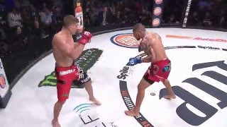 Bellator 153 Highlights