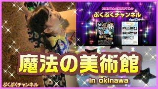 魔法の美術館☆プレミア鑑賞会♪ 浦添市美術館へ行って来ました^^