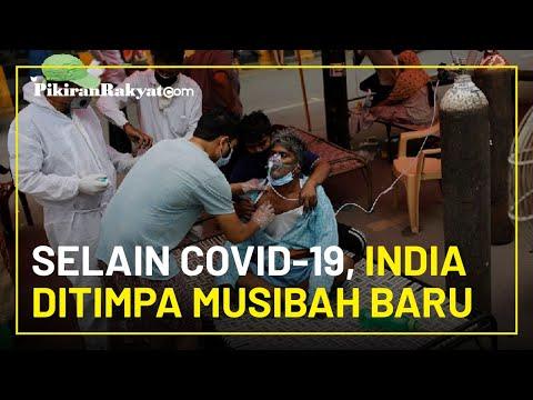 Pasien di India yang Telah Pulih dari Covid-19, Kini Tertular Infeksi Jamur Mematikan