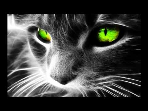 Deep House Music - Deep Impact (DJ DeeKaa On Beatport)
