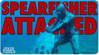 Spearfisher Gets Attacked By GIANT Grouper!