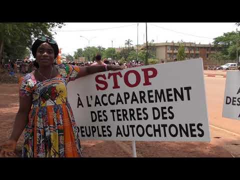STOP land grabbing of indigenous peoples' lands - International Women's day in Cameroun