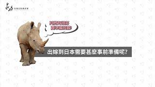 【艾瑪小姐要出嫁】系列Ⅱ:千里姻緣一線牽