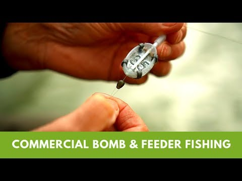 Commercial Bomb & Feeder Fishing With Tommy Pickering