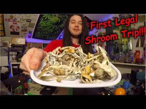 COLORADO'S FIRST LEGAL SHROOM TRIP