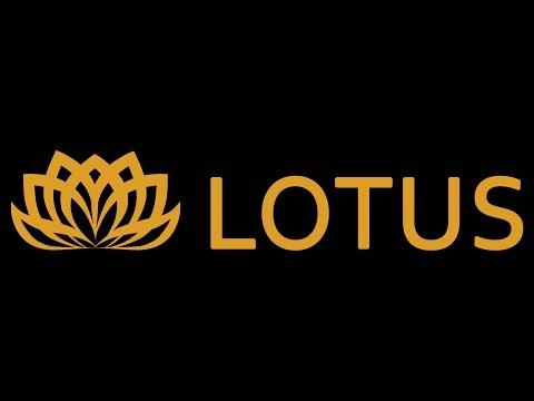 Боярка LOVE: Салон краси Lotus у Боярці ми відкриті для Вас перукарські послуги