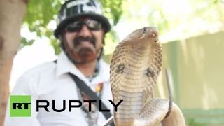 India: Snake man rescues tens of thousands of poisonous serpents