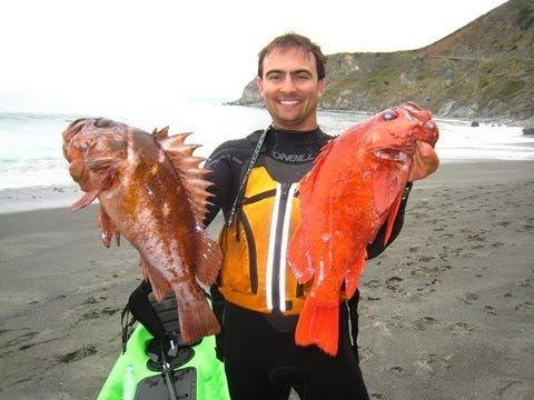 Kayaking for california rockfish 2011 youtube for Rock cod fish