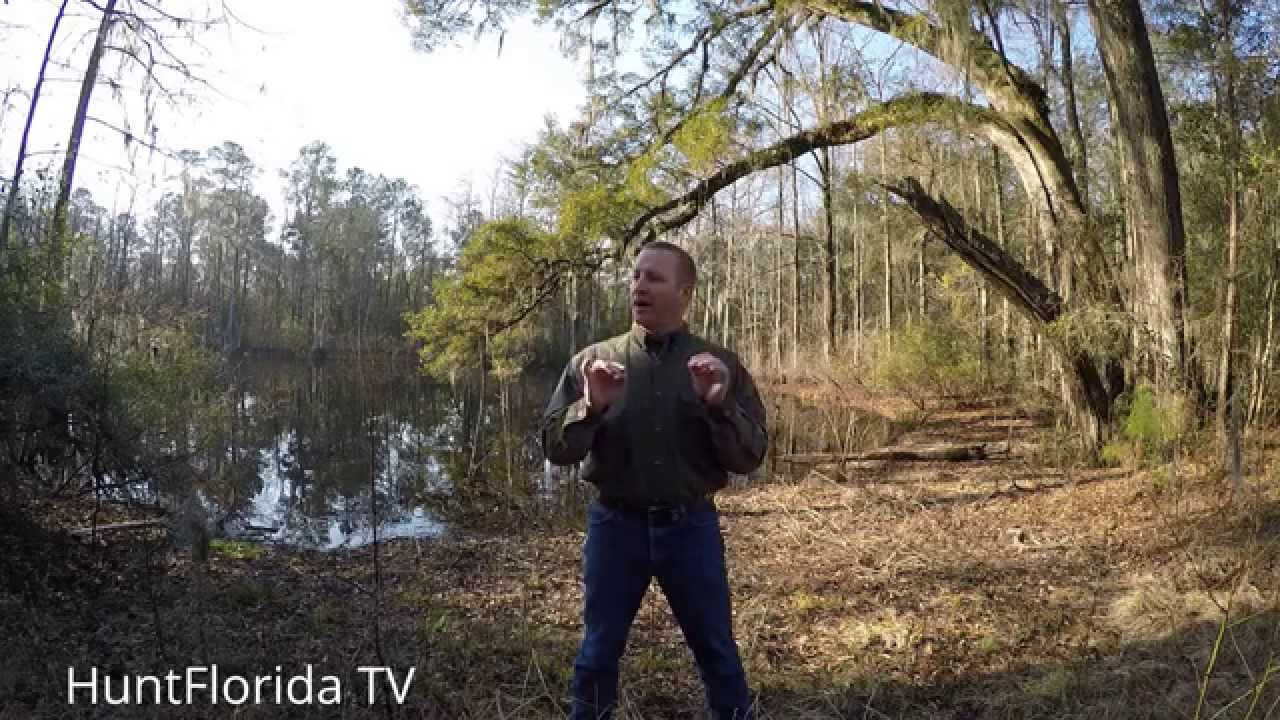pinpointing good turkey hunting locations and building makeshift ground blinds