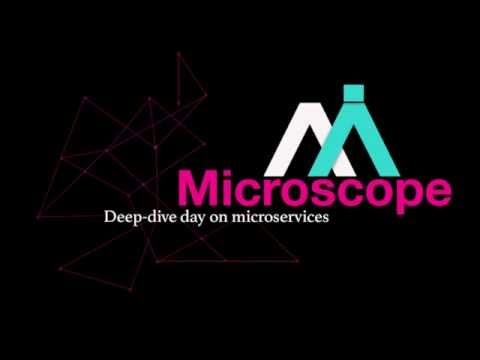 Microscope: Mesoscope Project