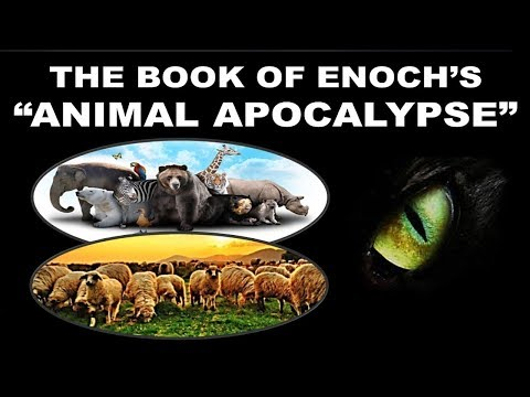 Book Enoch's Animal