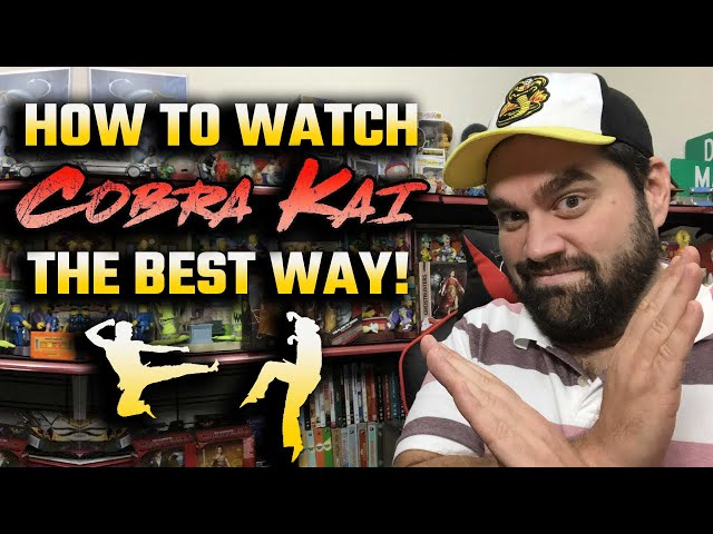 How To Watch Cobra Kai & The Karate Kid The Best Way - Review