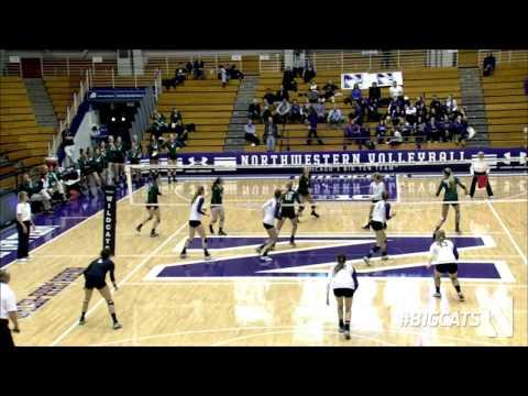 Volleyball vs. Michigan State Highlights (11/19/14)