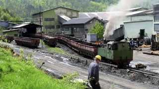 Banovici Coal Mine - Bosnian Narrow gauge Steam in Spring Sunshine