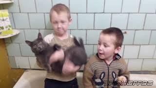 Ленинград - Экспонат (на лабутенах и в охуительных штанах)