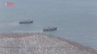 В Петропавловск-Камчатском построят новый рыбоперерабатывающий завод