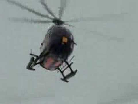 Helicopter Surveys