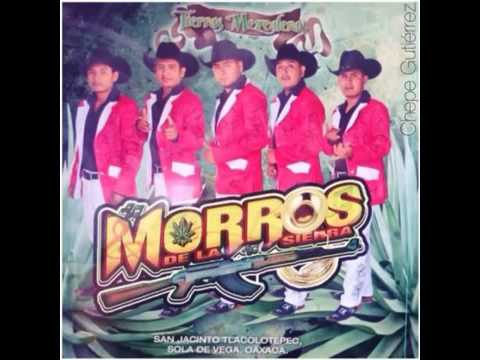 """Cosecha Nocturna """"los Morros De La Sierra"""" Youtube"""