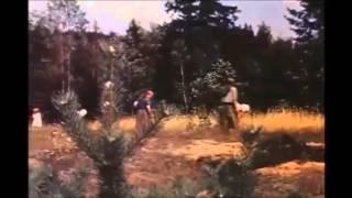 "22.06.1941 - Weisung Nr.  21. Fall ""Barbarossa"""