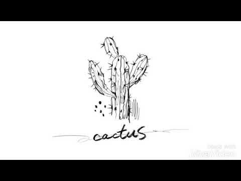 빅스 엔 선인장 | VIXX N Cactus
