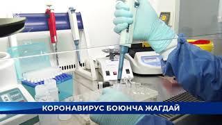 Өлкөдө 1 октябрга карата коронавирус жуккан жаңы 172 учур катталды