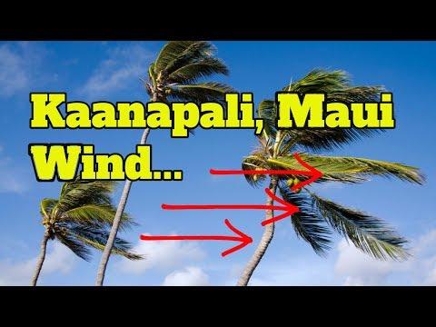Kaanapali Wind - Maui Windy (GoPro HD)