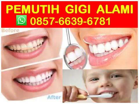 Hub 0857 6639 6781 Wa Obat Pemutih Gigi Kuning Di Apotik Pemutih