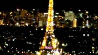 パリ夜景 モンパルナスタワーから