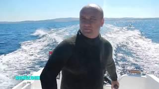 Saroz körfezi özel bölüm Çiğ balık ,Hani balığı ızgara