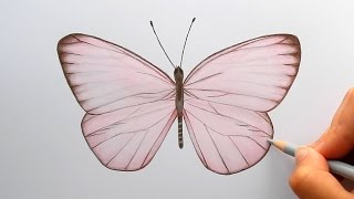 Timelapse | Drawing a light pink Butterfly with colored pencils and copic markers | Emmy Kalia