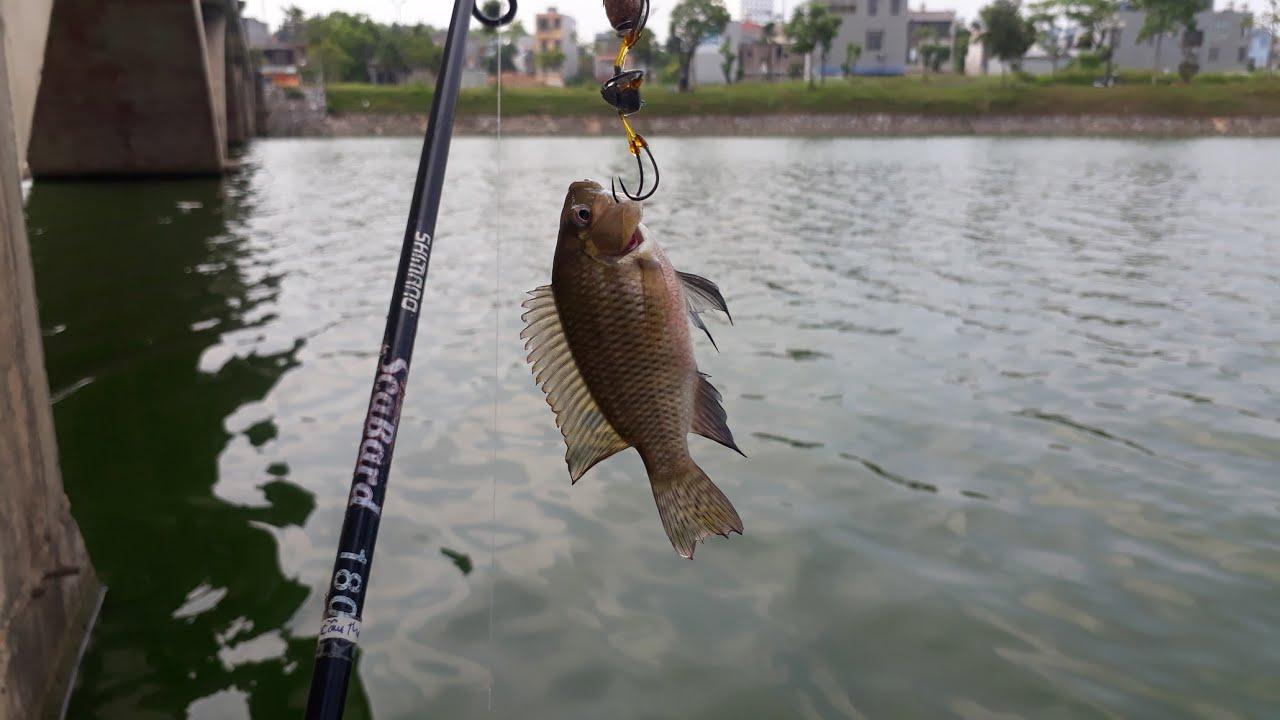 fishing, nghỉ trưa ra hồ chơi câu lục chạm bằng cần câu lure 2 khúc giật cá sướng tay