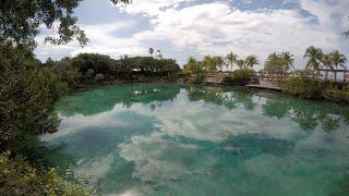 Chankanaab Lagoon, Cozumel, Nov. 2018