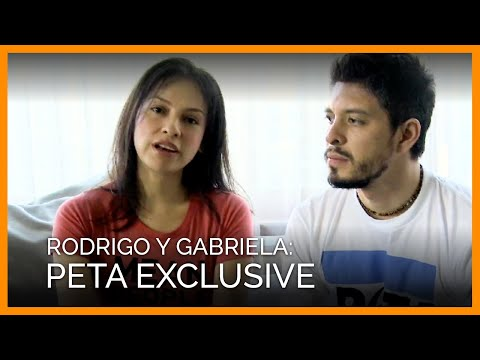 Rodrigo y Gabriela PETA Interview