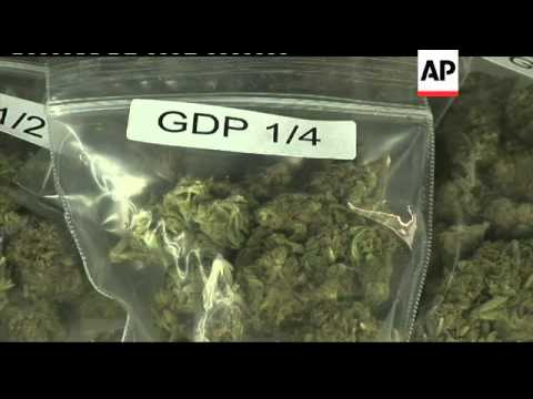 Californians to vote on legalisation of marijuana
