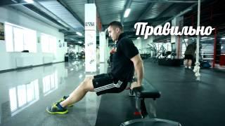Тренировка в домашних условиях от MegaGym.com