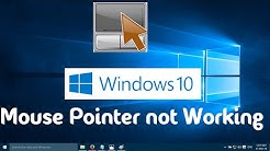 Mouse Pointer not Working in Windows 10 (One Simple Solution)