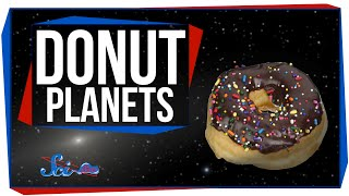 Life on a Donut Planet
