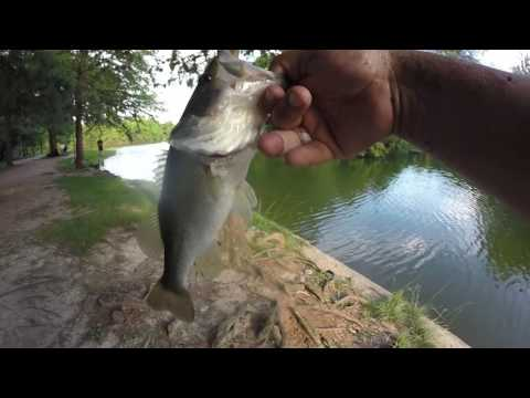 Memorial Hermann Park Lake, Houston TX (HD) Bass Fishing! And good eats!