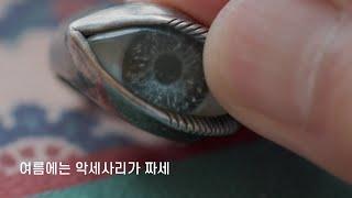 여름맞이 내가 구매한 패션잡화 1탄