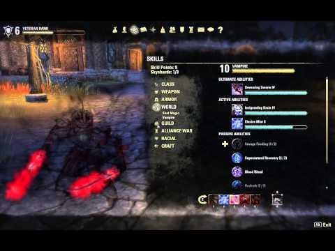 Elder Scrolls Online My Vampire/Nightblade Build/Gear - General Ody