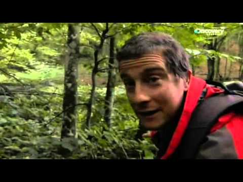 S04E14 The Inside Story (Episodio Speciale) - Bear Grylls -