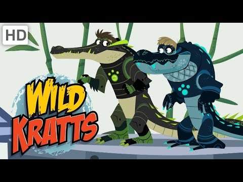 Wild Kratts 🐊 Alligators vs. Crocodiles! | Kids Videos