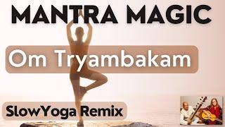 Om Tryambakam Yoga Remix