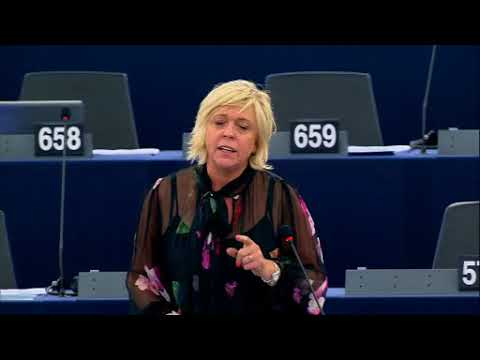 Hilde Vautmans 24 Oct 2017 plenary speech on European Council meeting 19 20 Oct 2017