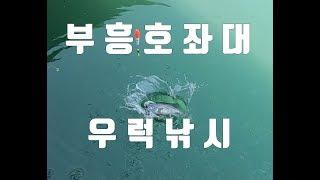 부흥호좌대 도비도 우럭낚시 sea fishing Roc…