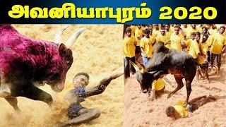 Avaniyapuram Jallikattu 2020 Live - 15-01-2020 Pongal Special Program