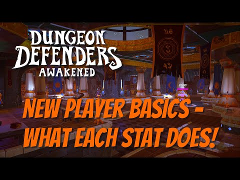 DDA Basics! What Each Stat Does For You!