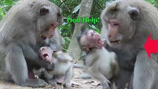 Monkey Cyclops catching cute baby bite, Cute Baby Crying A Terrified and Hurt, God Help Baby